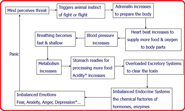 Negative Chain Reaction of Stress