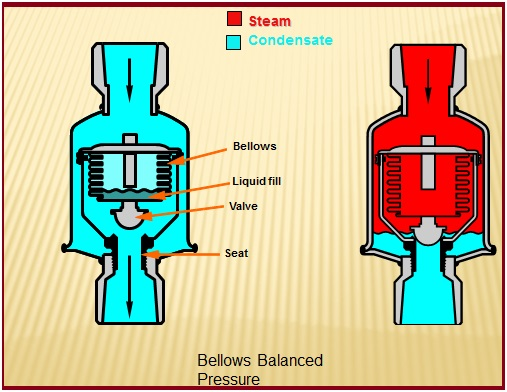 Bellows Balanced pressure type steam trap
