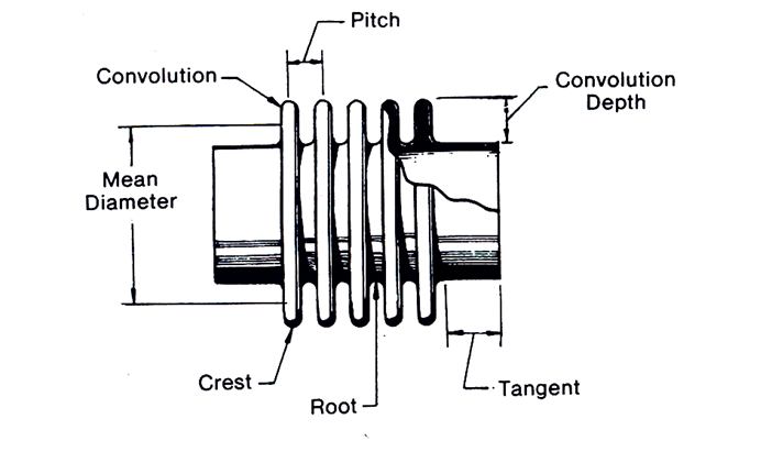 Basic Components of Bellow