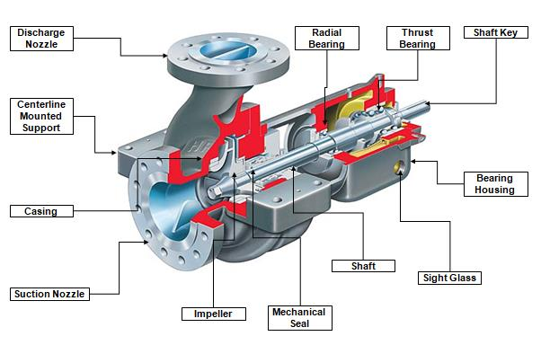 Main Components of a Centrifugal Pump